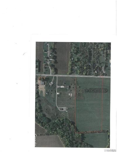 Niagara County Residential Lots & Land A-Active: Ewings Road