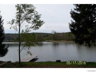 Allegany County, Cattaraugus County Residential Lots & Land A-Active: 379 North Shore Rd