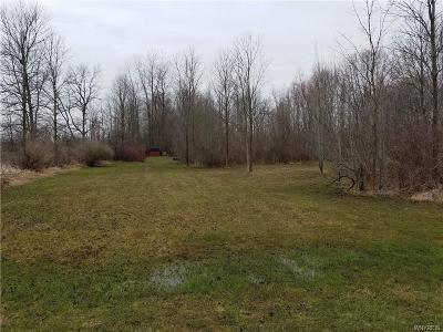 Orleans County Residential Lots & Land A-Active: 5528 East Shelby Road