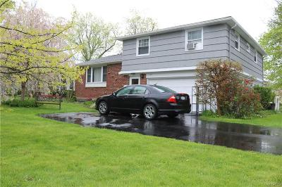 Amherst Single Family Home A-Active: 177 Garrison Road