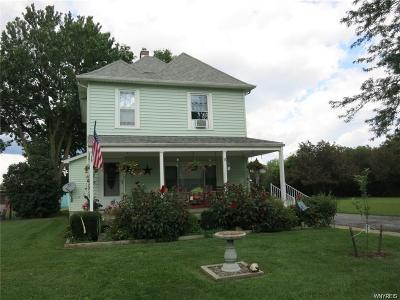 Lewiston Single Family Home A-Active: 1419 Fenton Avenue