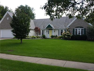 Amherst Single Family Home A-Active: 7 Clearwater Drive