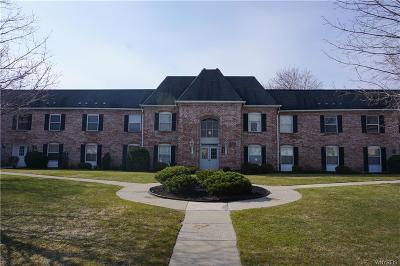 Amherst Condo/Townhouse A-Active: 4547 Chestnut Ridge Road #110B