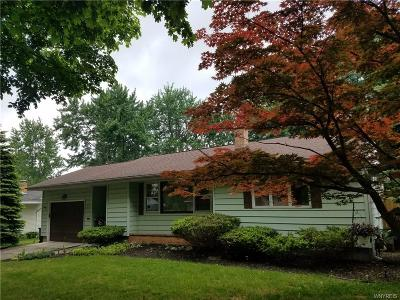 Niagara County Single Family Home A-Active: 16 Roosevelt Drive