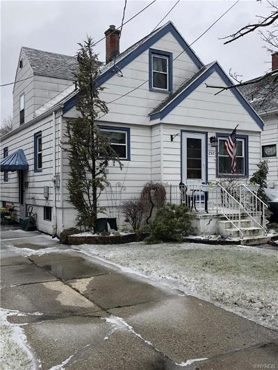 Buffalo Single Family Home A-Active: 252 Willett Street
