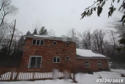 Colden Single Family Home A-Active: 9735 Darien Road