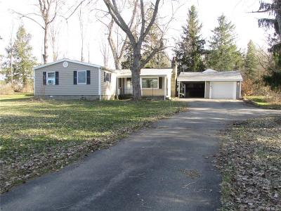 North Collins Single Family Home A-Active: 4181 Langford Road