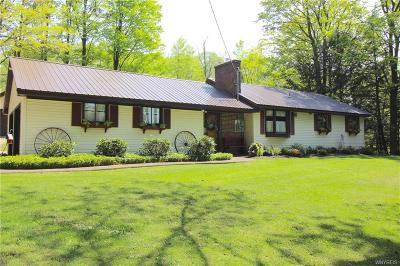 Colden Single Family Home A-Active: 9717 Partridge Road