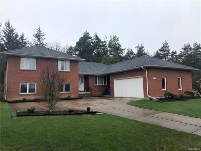 West Seneca Single Family Home A-Active: 245 Schultz Road
