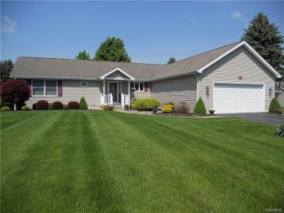 Lancaster Single Family Home A-Active: 1280 Ransom Road