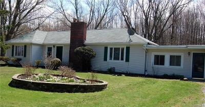 Orchard Park Single Family Home A-Active: 7525 Ellicott Road