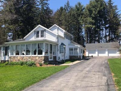 Genesee County Single Family Home A-Active: 11050 Alexander Road