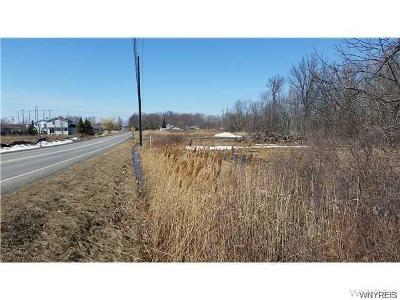 Niagara Falls Residential Lots & Land A-Active: 2349 Jagow Road