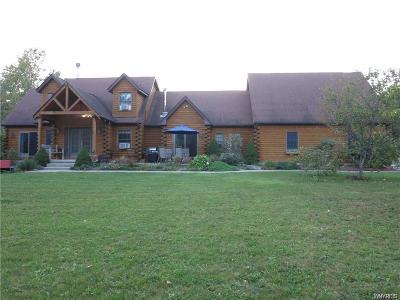 Grand Island Single Family Home A-Active: 1578 Baseline Road