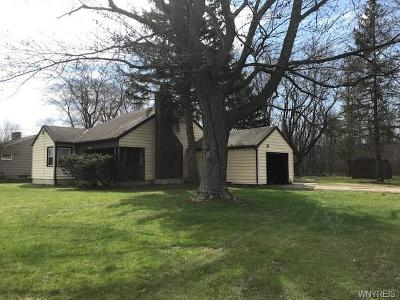 Lewiston Single Family Home A-Active: 738 Upper Mountain Road