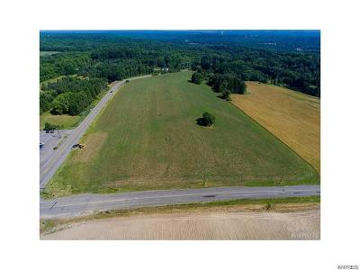Gowanda Residential Lots & Land A-Active: V/L Route 39