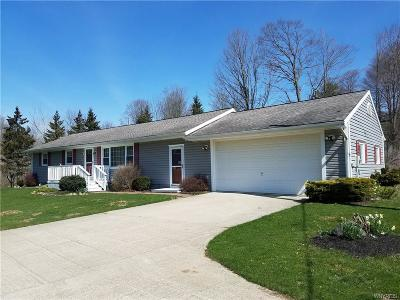 Cattaraugus Single Family Home A-Active: 7804 Route 353