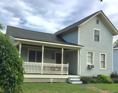 Ellicottville Single Family Home A-Active: 6473 Route 242 East