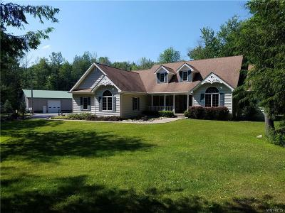 Bennington Single Family Home A-Active: 673 Getman Road
