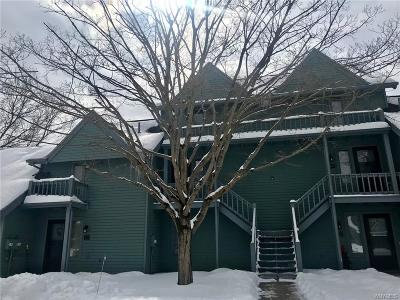 Ellicottville Condo/Townhouse A-Active: 100 Wildflower