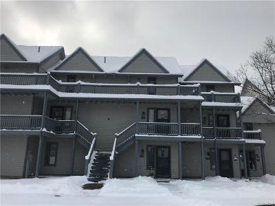 Ellicottville Condo/Townhouse A-Active: 88 Wildflower