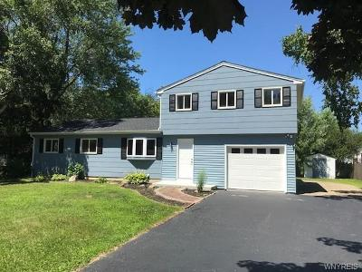 Orchard Park Single Family Home A-Active: 17 Puritan Place