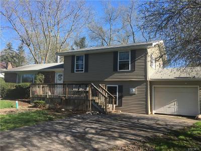 Lewiston Single Family Home A-Active: 522 Morgan Drive
