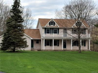 Orchard Park Single Family Home A-Active: 6456 Chestnut Ridge Road