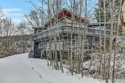Ellicottville Single Family Home A-Active: 6289 Sunset Road