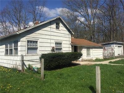 Wales NY Single Family Home A-Active: $94,500