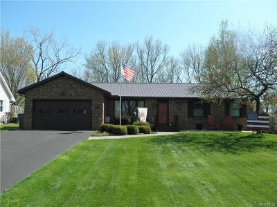 Hamburg Single Family Home A-Active: 4725 Lilydale Drive