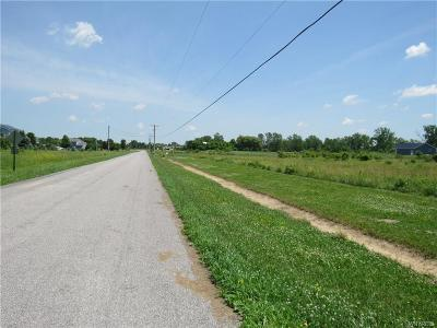 Genesee County Residential Lots & Land A-Active: V/L Bell Road