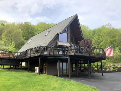 Ellicottville Single Family Home A-Active: 6674 Maples Road