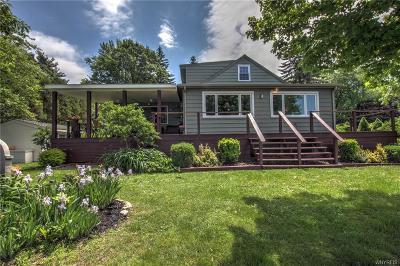 Buffalo, Evans, Hamburg Single Family Home A-Active: 78 Summerdale Road