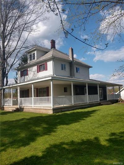 Allegany Single Family Home A-Active: 1958 Four Mile Road