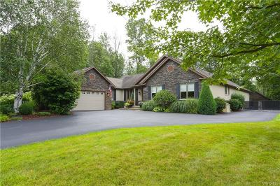 Erie County Single Family Home A-Active: 867 Casey Road