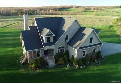 Erie County Single Family Home A-Active: 10980 Allen Road
