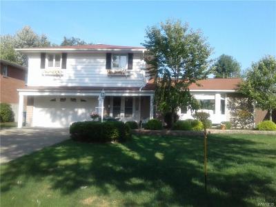 Amherst NY Single Family Home A-Active: $299,900