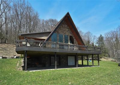 Frewsburg Single Family Home A-Active: 767 West Perimeter Road #B