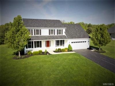 Orchard Park Single Family Home A-Active: 46 Hilltowne Drive