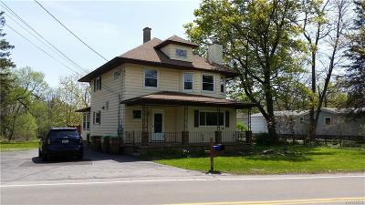 Cheektowaga Multi Family 2-4 A-Active: 17 Indian Road