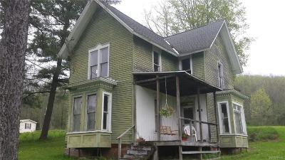 Randolph Single Family Home A-Active: 3938 Route 394
