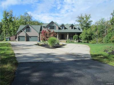 Erie County Single Family Home A-Active: 6150 Heltz Road