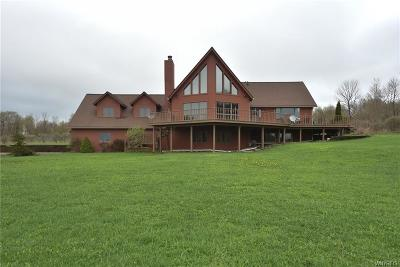 Ellicottville Single Family Home A-Active: 7054 High Meadows