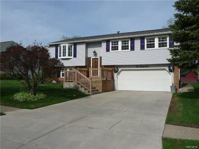 West Seneca Single Family Home A-Active: 124 Garry Drive