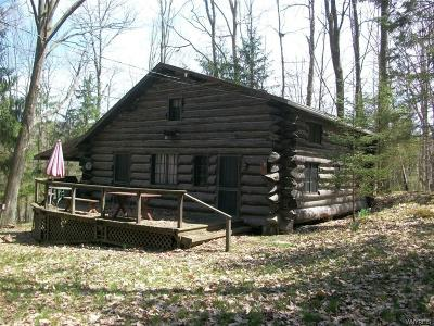 Allegany County, Cattaraugus County Single Family Home A-Active: 8406 Trail 6 Trail
