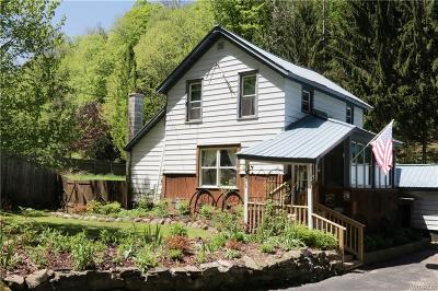 Little Valley Single Family Home A-Active: 311 Fourth Street