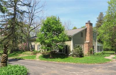 Erie County Single Family Home A-Active: 1028 Big Tree Road