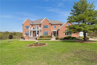 Colden Single Family Home A-Active: 8171 Cole Road