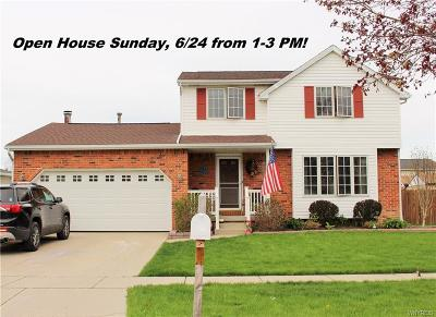 Erie County Single Family Home A-Active: 249 Hillpine Road